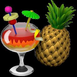 HandBrake for Mac 1.1.0 免费版 – 优秀的视频格式转换应用